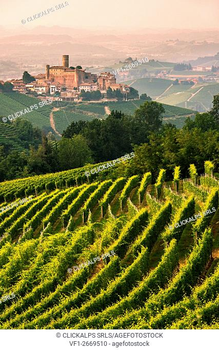 Italy, Piedmont, Cuneo district, Langhe, Castiglione Falletto, the vineyards and the castle of Castiglione Falletto