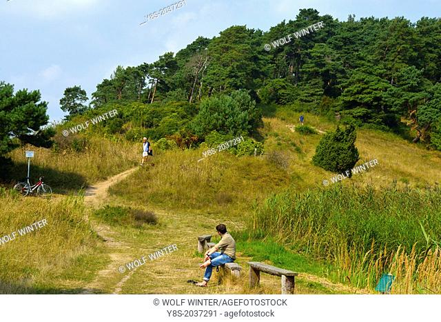 Weisser Berg hiking track at Luetow, Usedom Island, Germany