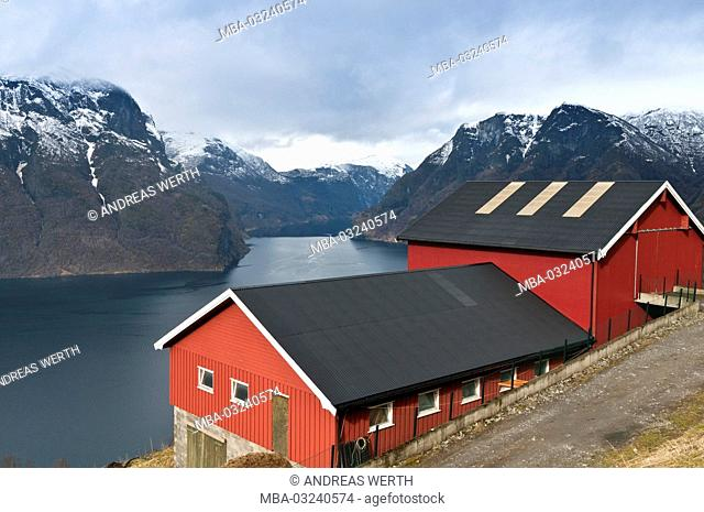 Farm in the Aurlandsfjord, a branch of the Sognefjords, place Aurland, late winter, Sogn of Fjordane, Norway