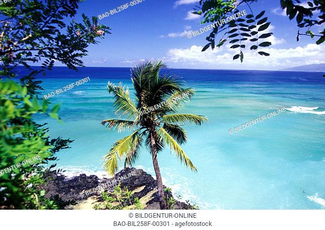A dream beach with Moya in sueden of the Comoro Archipelago island Anjouan before the African coast in the Indian ocean