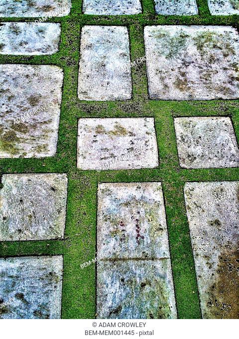 Stones in modern garden walkway