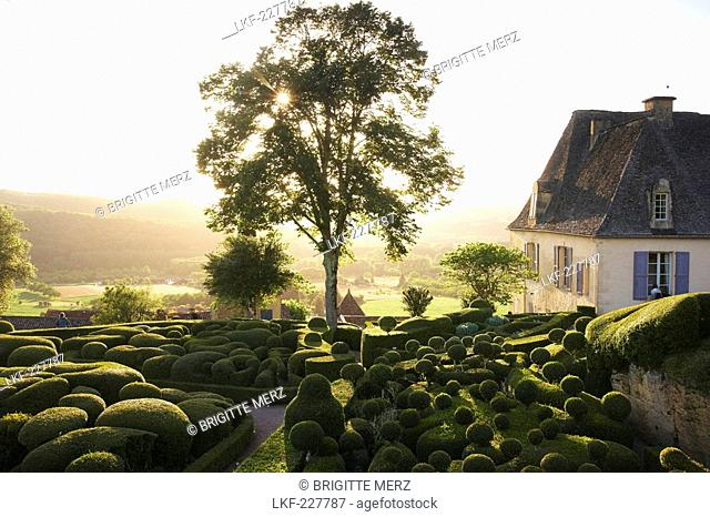 Les Jardins de Marqueyssac at sunset, near Beynac, The wy of St. James, Road to Santiago, Chemins de Saint-Jacques, Via Lemovicensis, Beynac, Dept