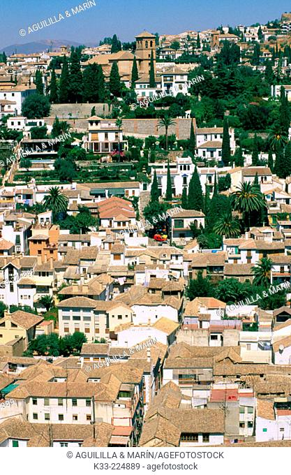 View of the Albaicin in Granada. Andalusia. Spain