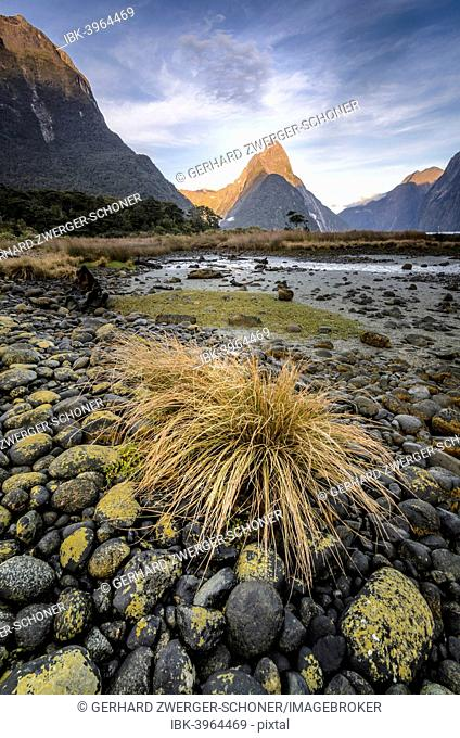 Mitre Peak, Fiordland National Park, Milford Sound, South Island, New Zealand
