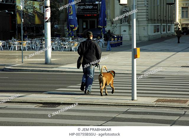 A MAN WALKING HIS DOG IN VIENNA, AUSTRIA