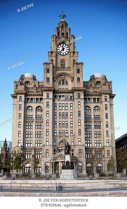 Royal Liver building one of liverpools three graces listed buildings on the liverpool waterfront at pier head merseyside england uk