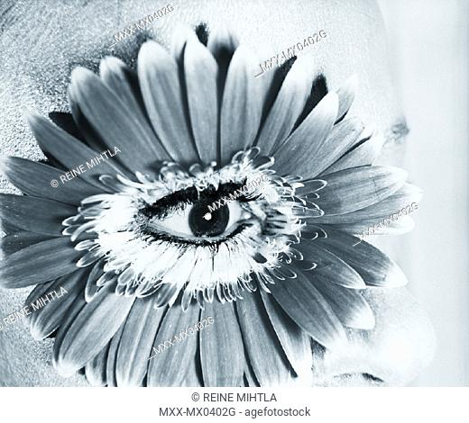 Close up of eye with flower