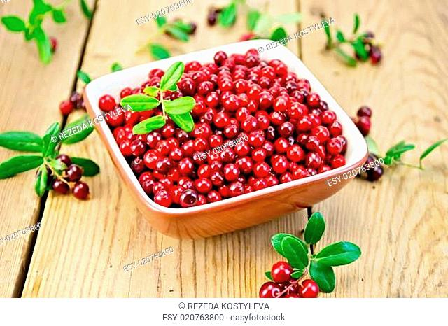 Lingonberry red in bowl on board
