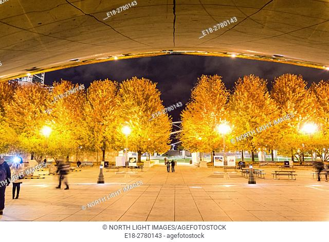 USA, IL, Chicago. View of Millennium Park at night from underneath the famous public art sculpture, Cloud Gate, by Indian-born, British artist, Anish Kapoor