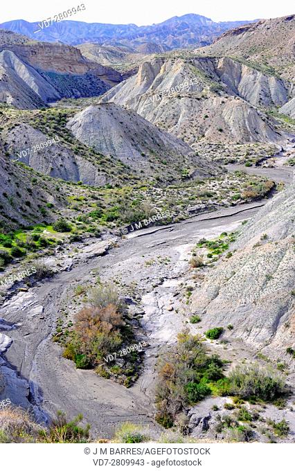 Wadi or rambla is an intermittent stream characteristic of arid climates. This photo was taken in Desierto de Tabernas, Almeria, Andalusia, Spain