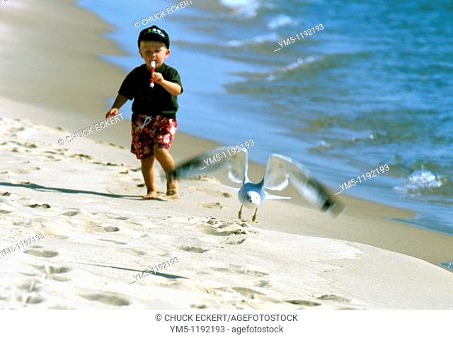 Young Boy on beach blowing flute while chasing frightened seagull