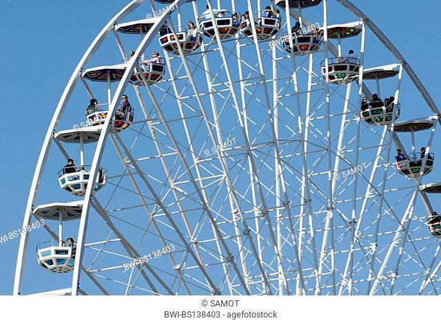 Vienna Prater, giant flower wheel, Austria, Vienna
