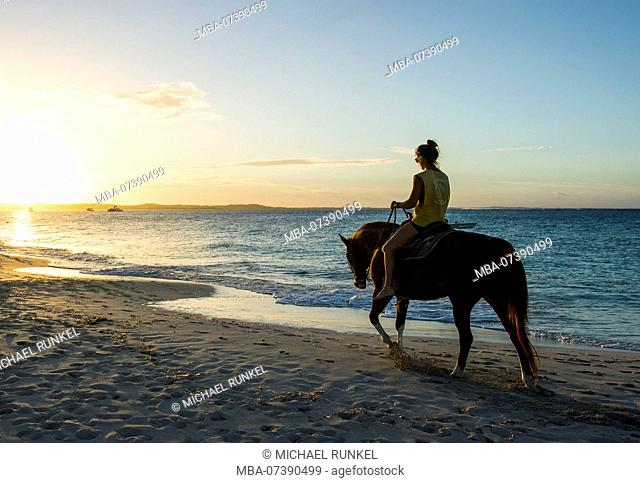 Woman riding a horse at Grace bay beach at sunset, Providenciales, Turks and Caicos