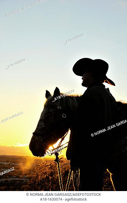 Riders and their horses take in the sunset in the Sonoran Desert, Tucson, Arizona, USA