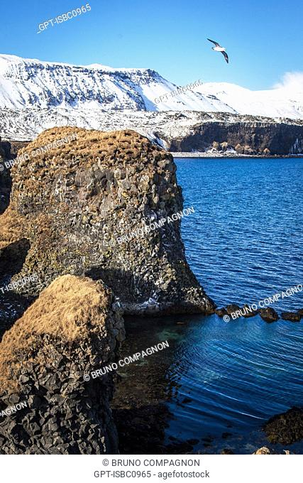 PORT OF ARNARSTAPI, SNAEFELLSNES PENINSULA, WESTERN ICELAND, EUROPE