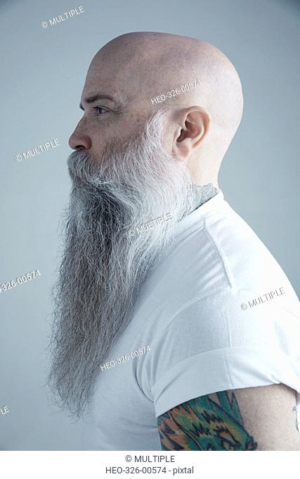 Profile portrait Caucasian male hipster with long gray beard and shaved-head looking away