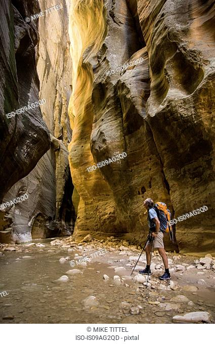 Male hiker backpacking the Narrows, Zion National Park, Utah, USA