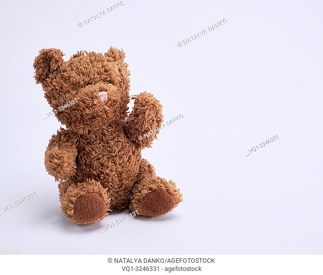 small brown teddy bear on a white background, copy space