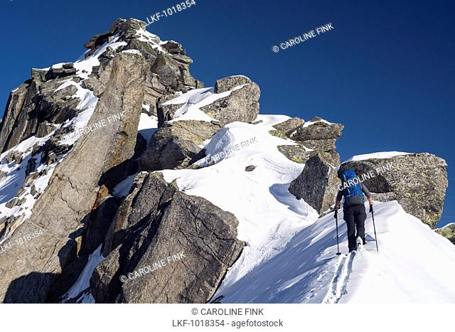 A female backcountry skier ascending a snowy ridge towards the summit of Piz Borel, Lepontine Alps, cantons of Ticino and Grison, Switzerland