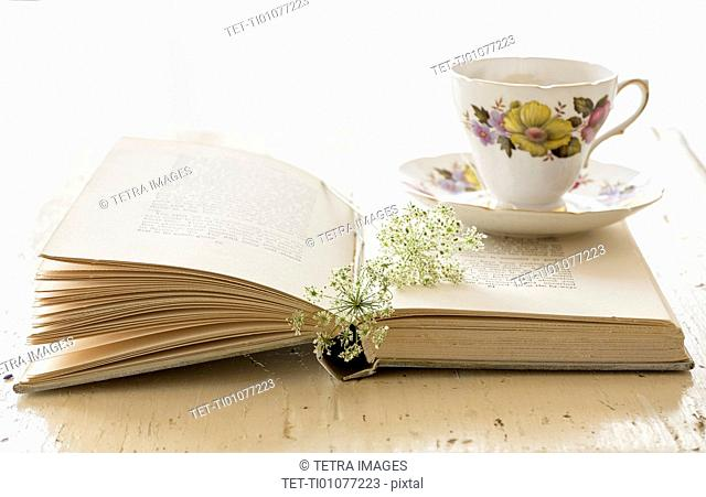 Studio shot of teacup and book with flower