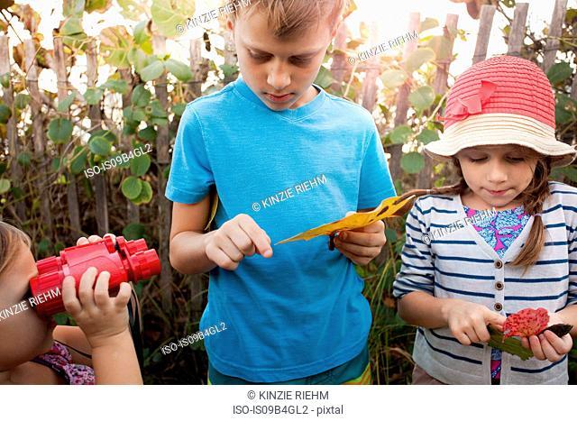 Children investigating leaves, Blowing Rocks Preserve, Jupiter, Florida, USA