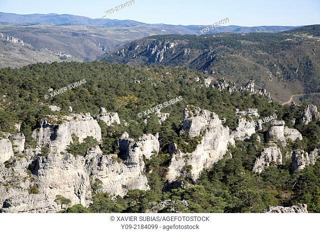 Chaos de Montpellier le Vieux, La Roque Sainte Marguerite, Aveyron department, Midi-Pyrénées, France