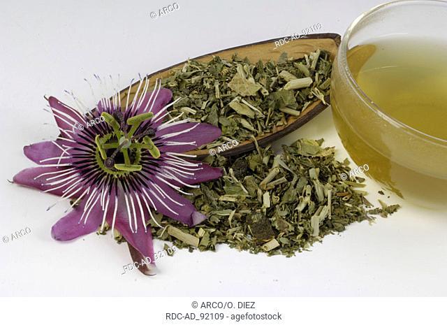 Dried Passion Vine Flower cup of tea and blossom Passiflora incarnata indoor Passifloraceae