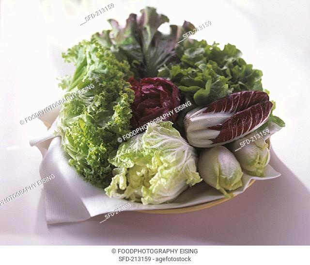 Various salads with Chinese cabbage & chicory on plate (2)