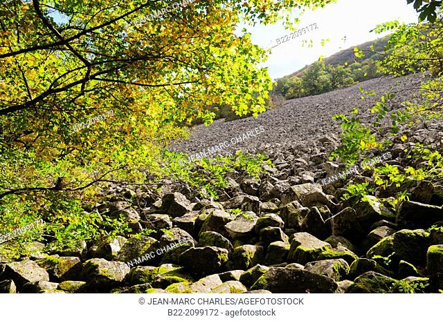 Impressive field of volcanic stones, called the Clapas de Thubiès, the lava flow of Roquelaure, situated on the municipality of Lassouts