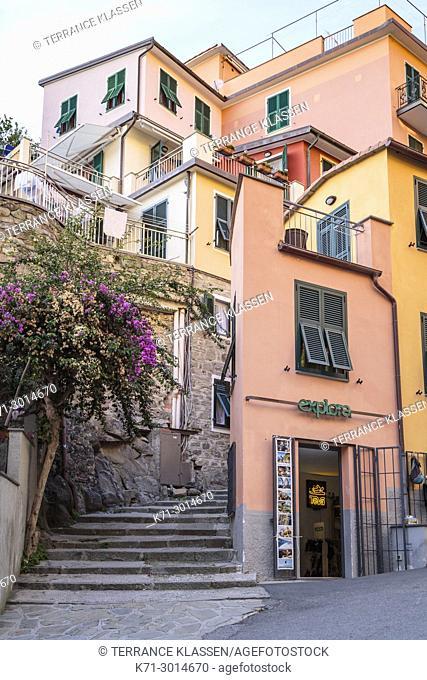 Colorful homes in the village of Manarola, Cinque terre, Liguria, Italy, Europe