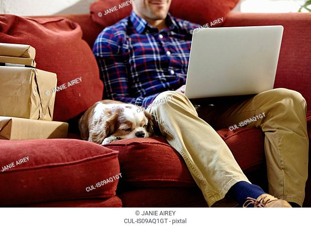 Mid adult man using laptop on sofa in picture framers showroom