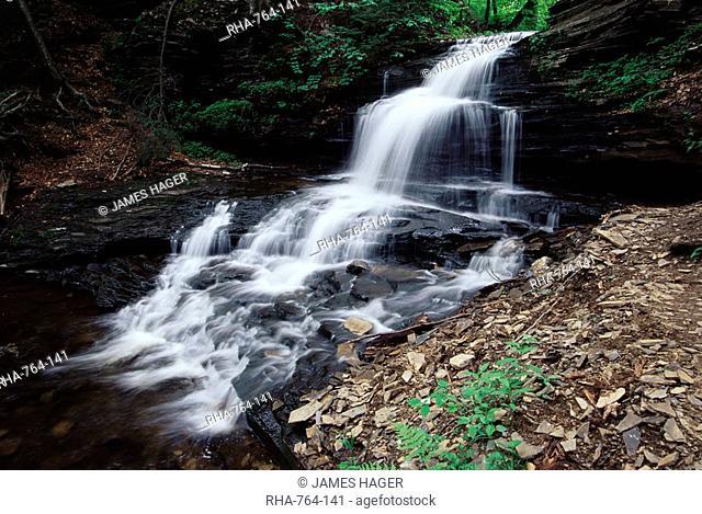 Waterfall, Ricketts Glen State Park, Pennsylvania, United States of America, North America
