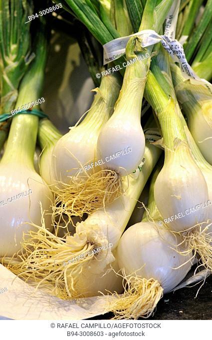 Onions for sale at La Boqueria market, Barcelona. Catalonia, Spain