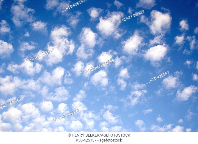 White fluffy clouds in pattern