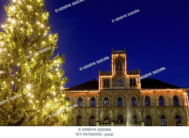 Illuminated Christmas tree and building facade