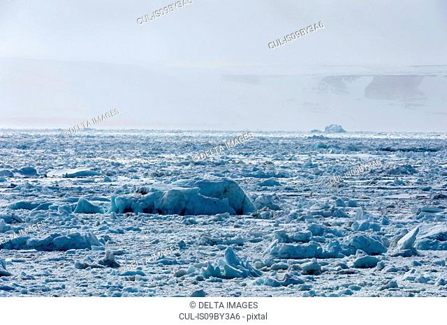 Sea ice and misty coastal landscape, Wahlenberg fjord, Nordaustlandet, Svalbard, Norway