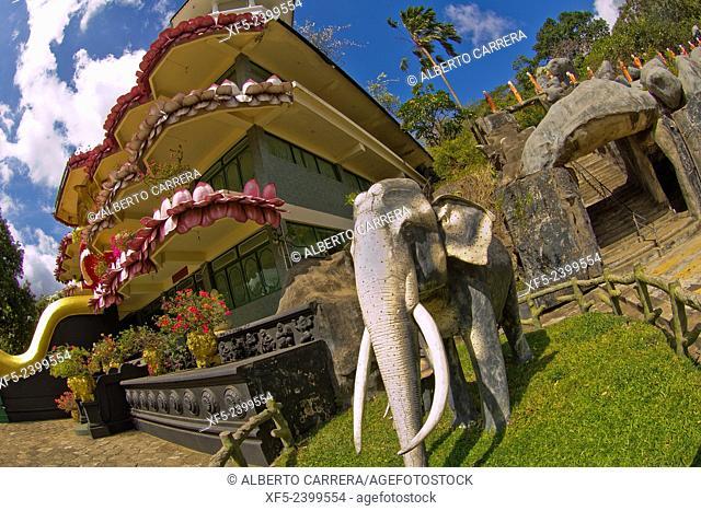 Sacred Elephants and Monks Sculptures, Golden Temple of Dambulla, Dambulla Cave Temple, UNESCO World Heritage Site, Kandy Province, Sri Lanka, Asia