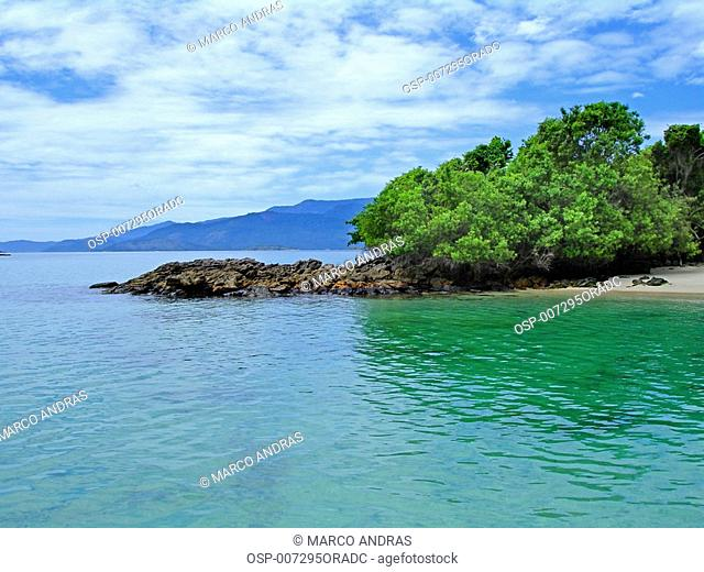 a vision of angra dos reis native island vegetation