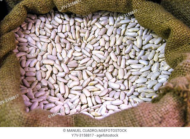 Fabada gorda (white beans) for sale