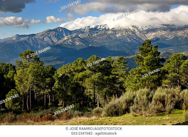 Sierra de Gredos from Abantera. Pedro Bernardo. Avila. Castilla Leon. Spain. Europe