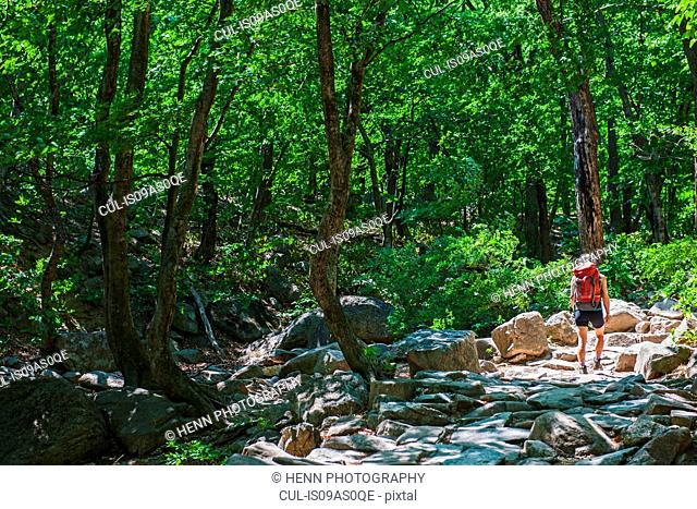 Woman hiking over a rocky trail on the way to Mt. Ulsanbawi at Seoraksan national park, Gangwon, South Korea