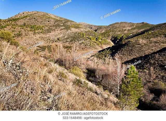 The Moraleja hill in the Sierra Norte  Valdesotos  Guadalajara  Castilla la Mancha  Spain