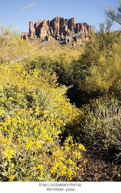 Superstition Mountains - Lost Dutchman State Park - Apache Junction, Arizona