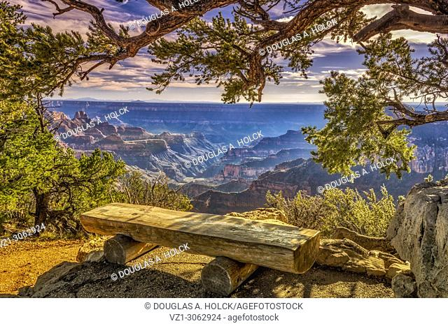 Bench overlooking North Rim of Grand Canyon
