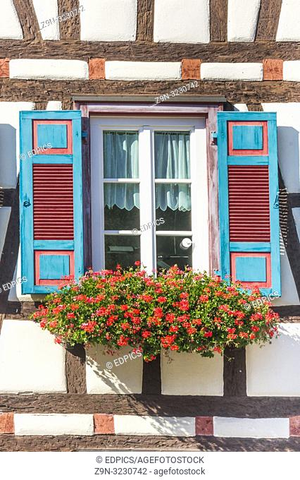 flower decked window with wooden turquoise colored shutters, schiltach, black forest, baden-wuerttemberg, germany