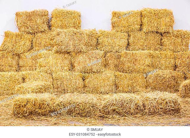 Rice straw bales in storage