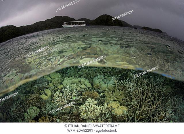 Rain over Coral Reef, Micronesia, Palau