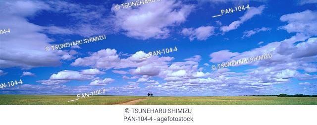 Clouds over Wuben-Perenjori Road, Western Australia, Australia