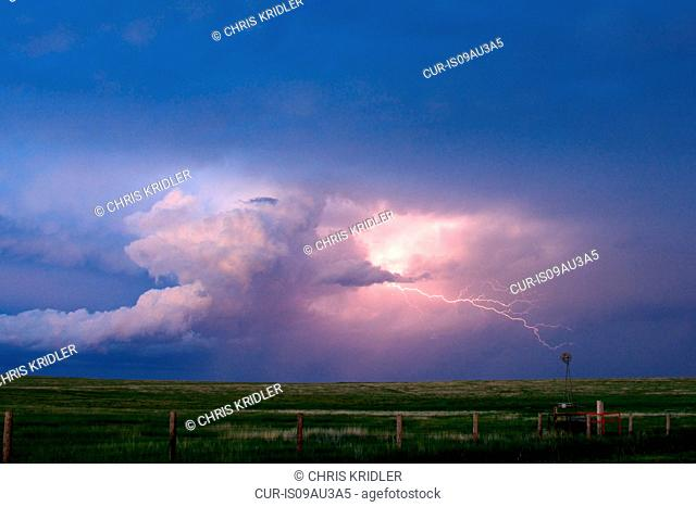 Lightning in storm cloud over lush green field, Sharon Springs, Kansas, USA