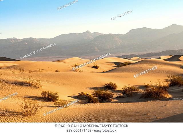 Sand dunes of Mesquite Flat in Death Valley Desert - California